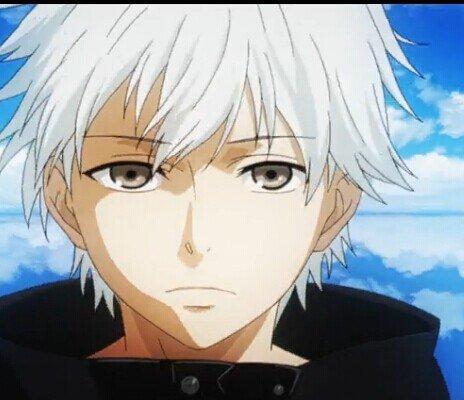 银发的长得都好看?盘点动漫银发美男子。